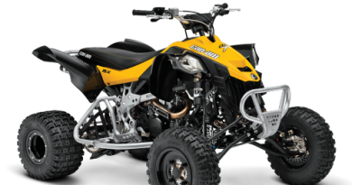 Can-Am DS 450 EFI XMX Xtrem Quad